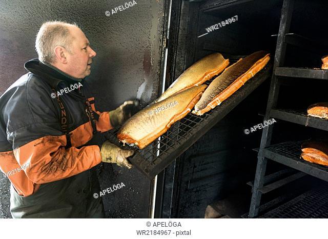 Side view of mature fisherman arranging chopped fish on shelf