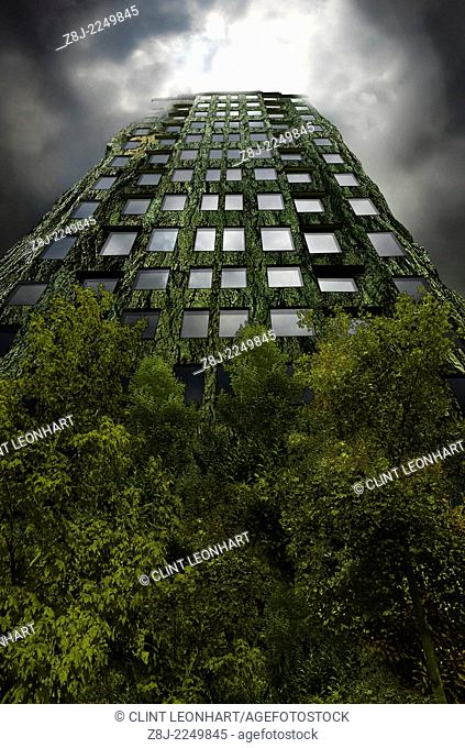 Digital composite image of a tree building