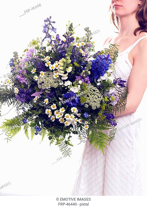 Bouquet of larkspur, vetch, camomile, phlox and fern