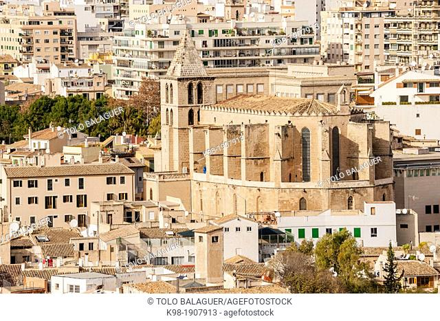 Parish Church of Santa Creu, founded by Berenguer de Palou, Bishop of Barcelona, XIII century Palma Mallorca Balearic Islands Spain