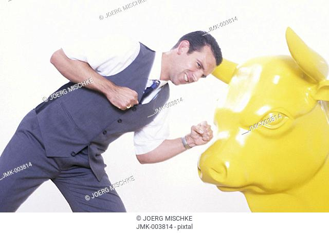 Studio picture of a young man, businessman, 25-30 30-35 35-40 years old, wearing a white shirt and a waistcoat, fighting with a yellow bull