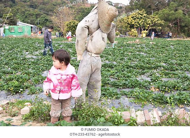 A small girl posing for photograph at the strawberry field, Taipo, Hong Kong