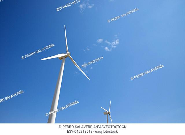 Windmill for electric power production, Maranchon, Guadalajara Province, Castilla La Mancha, Spain