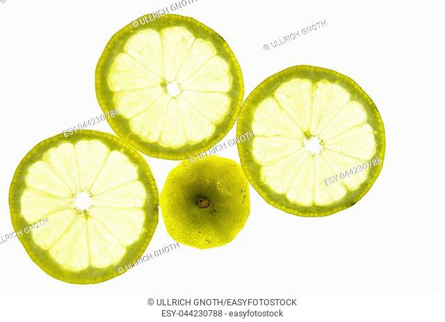Lemon slices placed in the back light
