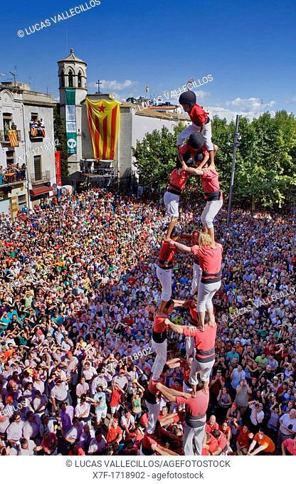 Colla Joves Xiquets de Valls  'Castellers' building human tower, a Catalan tradition  Vilafranca del Penedès  Barcelona province, Spain