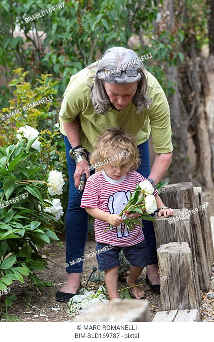 Caucasian woman and grandson picking flowers in garden
