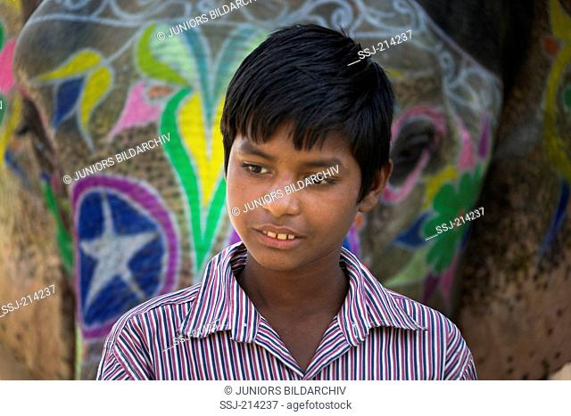 Boy standing in front of a decorated Asian Elephant (Elephas maximus indicus). Jaipur, Rajasthan, India