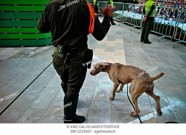 Drug and explosive trained dog by the Colombian police. Medellin Flower Festival
