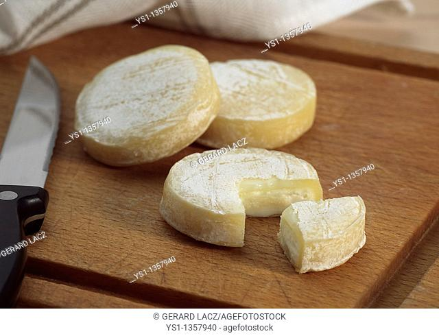ROCAMADOUR, FRENCH GOAT CHEESE