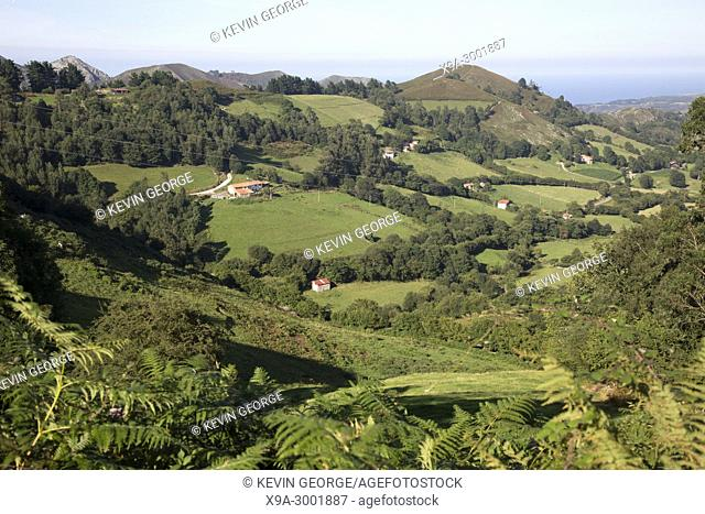 View of Countryside, Nueva, Austurias; Spain