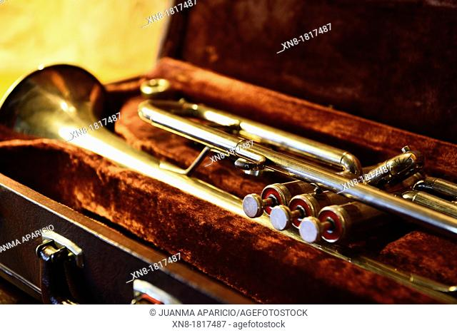 Old trumpet in the case