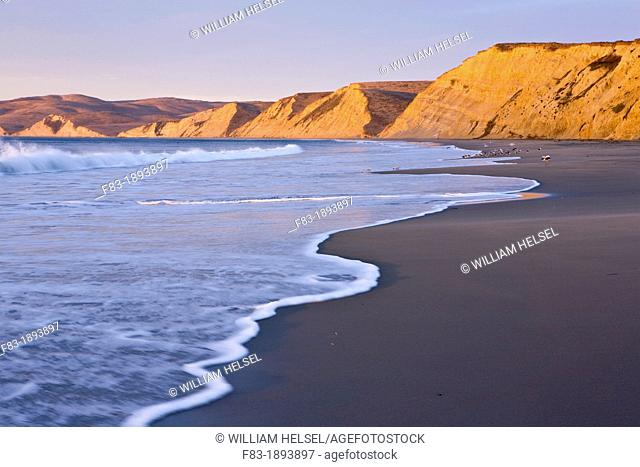 Beach, surf, and cliffs at sunrise, Drake's Beach, Point Reyes National Seashore, Marin County, California, USA