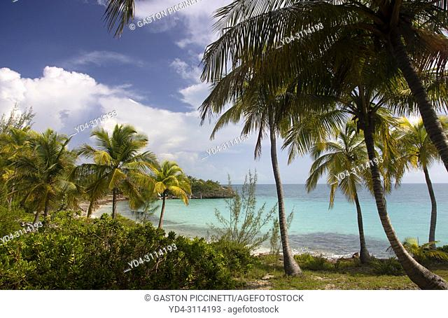 Oleander Gardens public beach, Eleuthera island, Bahamas