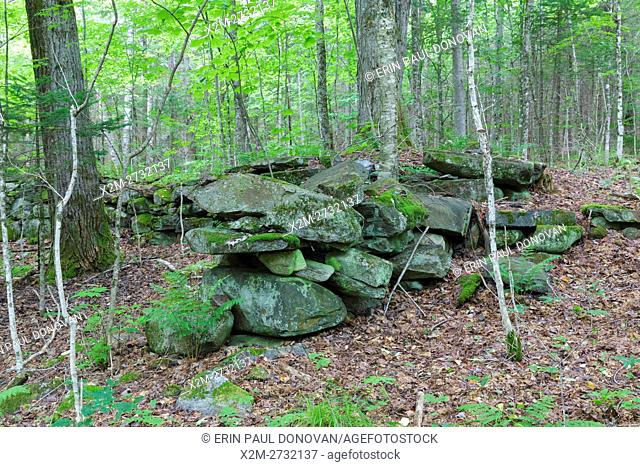 Site of Merrillâ. . s Mountain House in Warren, New Hampshire during the summer months. This is possibly the barn area. In 1834 Nathaniel Merrill built a...