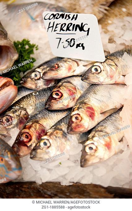 Fresh Cornish Herring for sale in a fishmonger's market stall