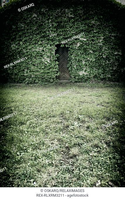 Old tower building ivy covered wooden door spooky
