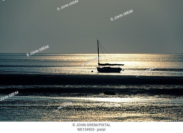 Sailboat in Cape Cod Bay, Crosby Beach, Brewster, Cape Cod, Massachusetts, USA