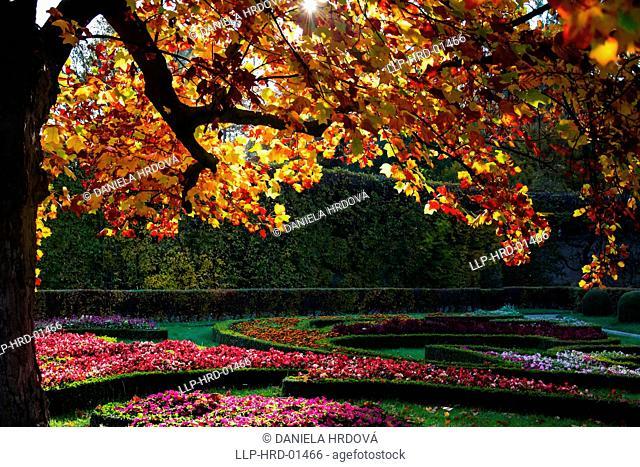 Kromeriz Town, Trees in Flower garden (Kvetna Zahrada), Czech Republic,Europe