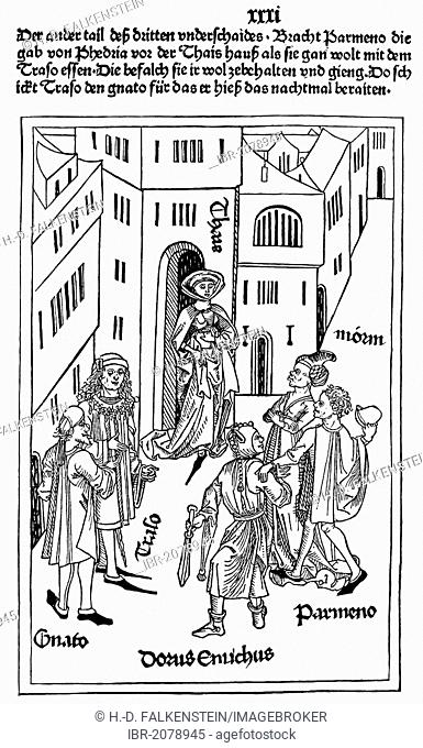 Historic print, book illustration from the early days of printing, woodcut from the Ulm Master Terenz, 1486, a late-medieval artist, 15th Century