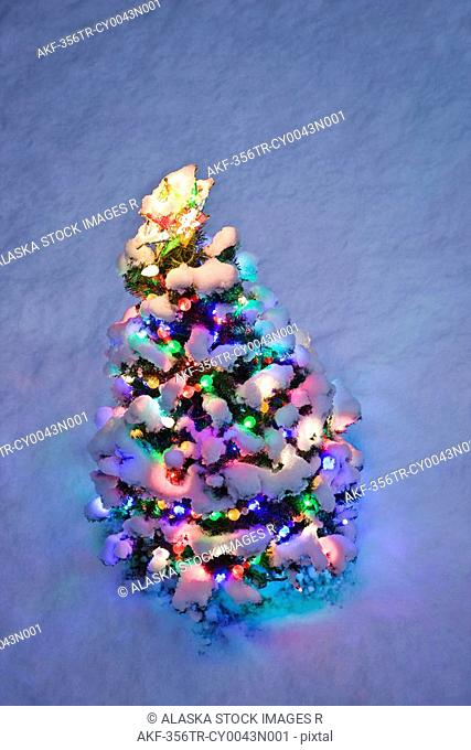 Overhead view of a small lit Christmas tree at twilight in winter
