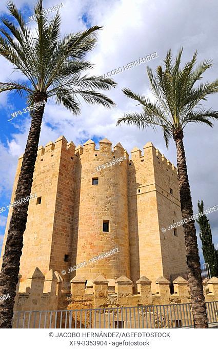 Castle of La Calahorra. Córdoba. Andalusia. Spain