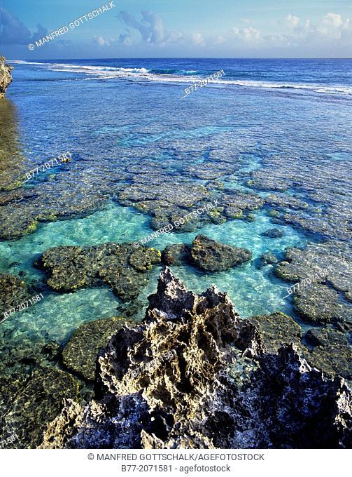 Cook Islands, Atiu Island, Makatea fringed coast line