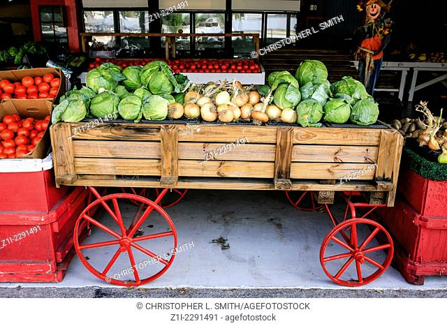 Small hand cart filled with fresh fruit and veg at a farmers market store in Florida