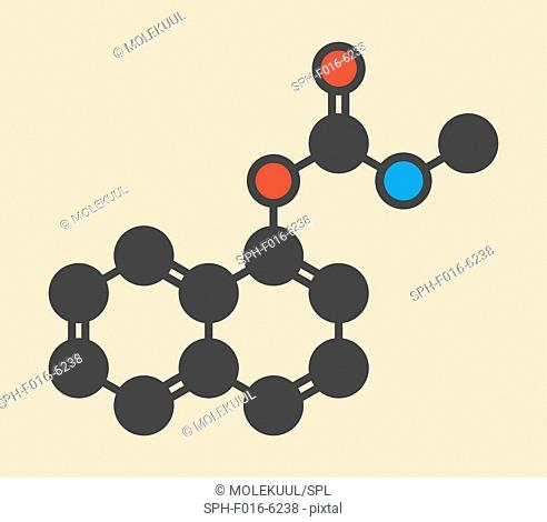Carbaryl (carbaril) insecticide molecule (carbamate class). Stylized skeletal formula (chemical structure). Atoms are shown as color-coded circles: hydrogen...