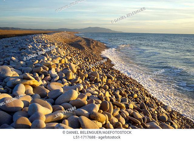 pebble beach, Prat de Cabanes-Torreblanca nature reserve, Castellon, Spain