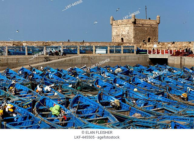 Fishing boats in the marina and the ancient Portuguese Citadel, Essaouira, Morocco