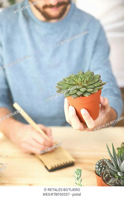 Man holding succulent plant and taking notes