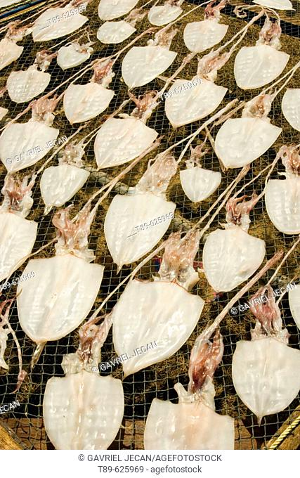 Squid drying on racks in the central Thailand in the Pranburi town on the Golf of Thailand coast of Golf of Thailand