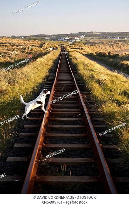 Bushmills Railway, Co Antrim