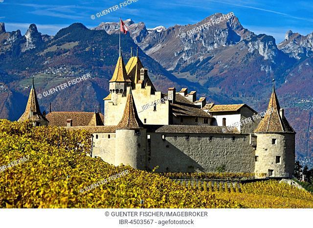 Wine Museum Aigle Castle, Chateau d'Aigle, Aigle, Canton of Vaud, Switzerland