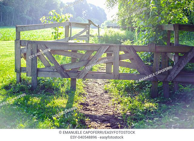 rural scene wooden gate closes path illuminated by morning sunlight