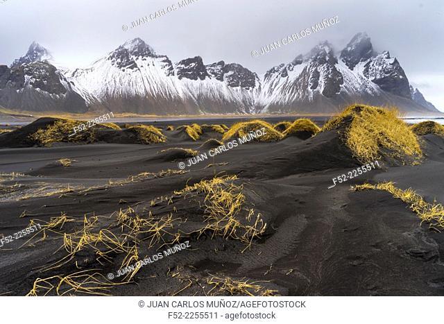 Stokksnes península, Hofn, Southern Iceland, Iceland