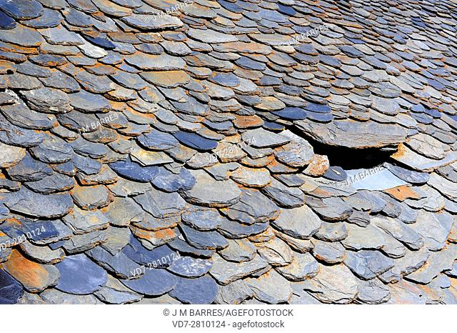 Roof shale. Shale is a fissile compacted sedimentary rock. This photo was taken in Pallars Sobira, Lleida, Catalonia, Spain