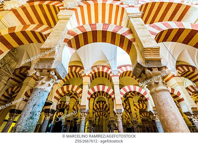 Hypostyle Hall in the Mosque-Cathedral of Córdoba, Andalusia, Spain, Europe