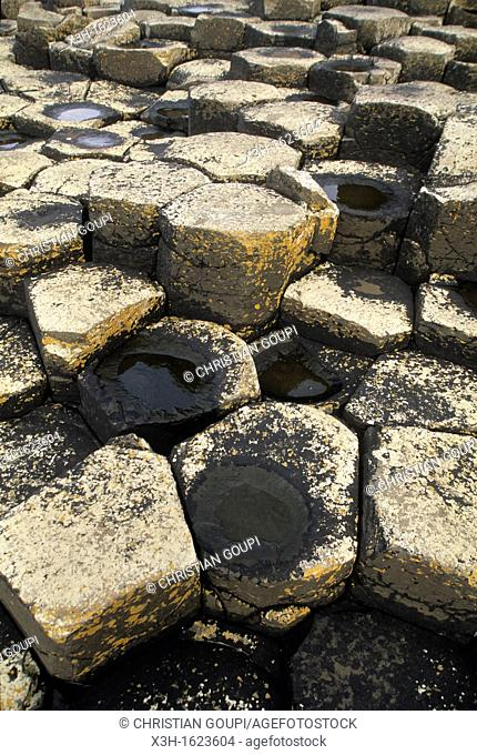 The Giant's Causeway, County Antrim, Northern Ireland, United Kingdom, Western Europe