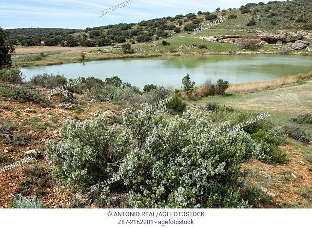 Laguna del Arquillo Natural Monument, Masegoso, Sierra de Alcaraz, Albacete province, Castilla-La Mancha, Spain