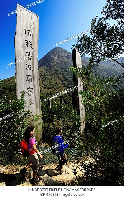 Hikers in front of wooden stelae at Wisdom Path, Lantau Peak, Lantau Island, Hong Kong, China
