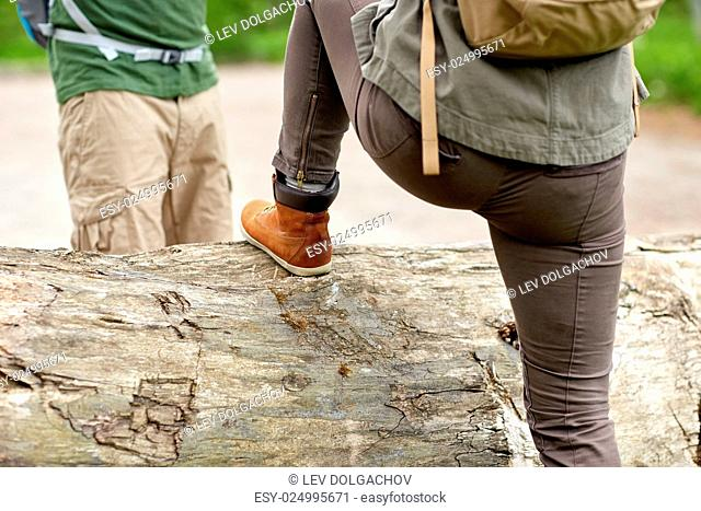 adventure, travel, tourism, hike and people concept - close up of couple with backpacks walking and climbing over fallen tree trunk in woods