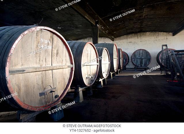 Barrels of Wine Bernadi Winery, Colonia del Sacramento, Uruguay, South America
