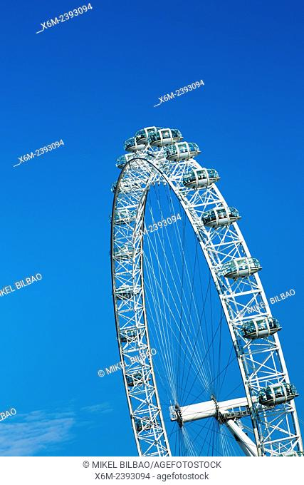 Millennium Wheel or London Eye. London, England, United kingdom, Europe