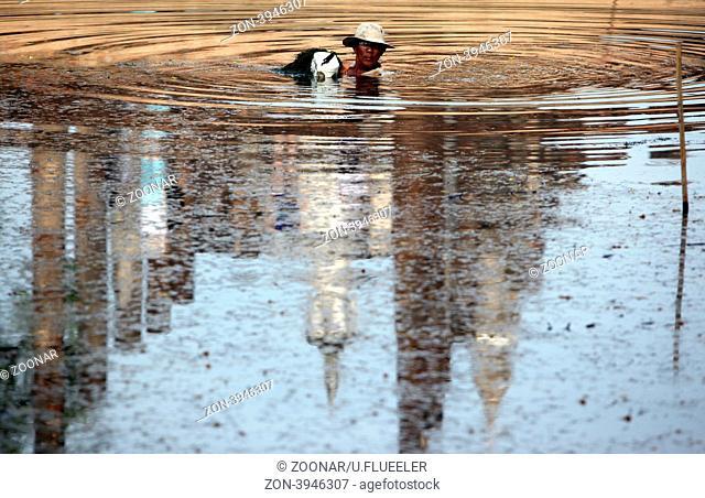 Ein Mann entfernt Seegras in einem Pool in Alt-Sukhothai in der Provinz Sukhothai im Norden von Thailand in Suedostasien