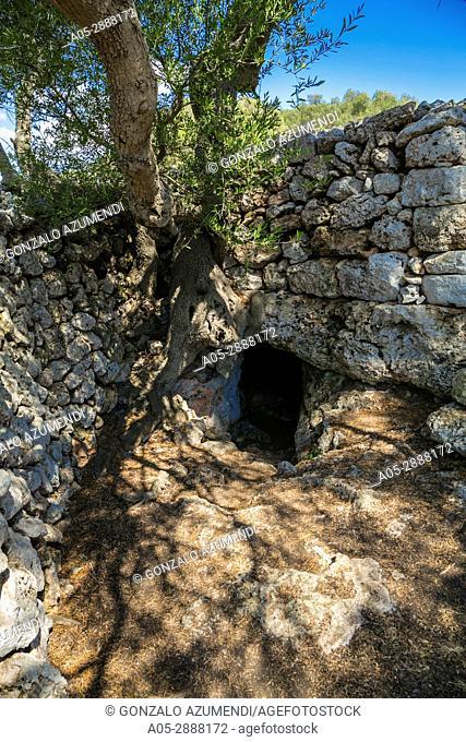 Talayotic Village of Son Catlar(1000-700 b C). Ciutadella de Menorca Municipality. Minorca Island. Balearic Islands. Spain