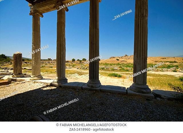 Colums of the Ionic Stoa. Miletos. Anatolia, Turkey