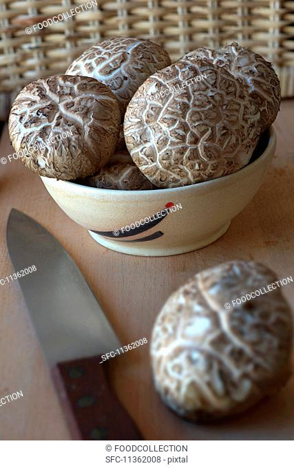 Fresh shiitake mushrooms in a ceramic bowl