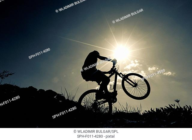 Cyclist on bike, silhouette