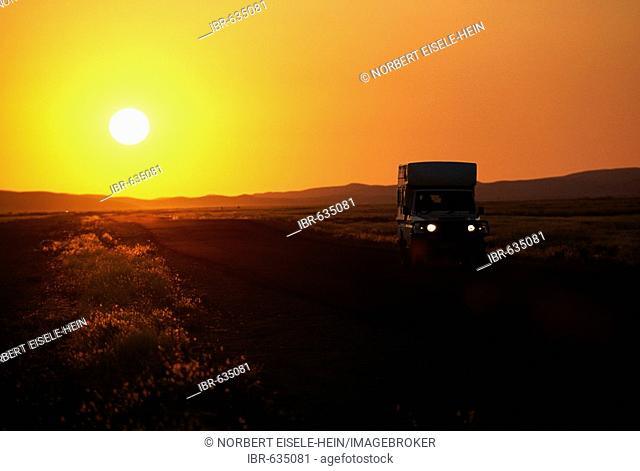 Off-road vehicle driving at sunset, NamibRand Nature Reserve, Namibia, Africa